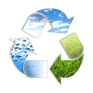 ökologisch sinnvoll